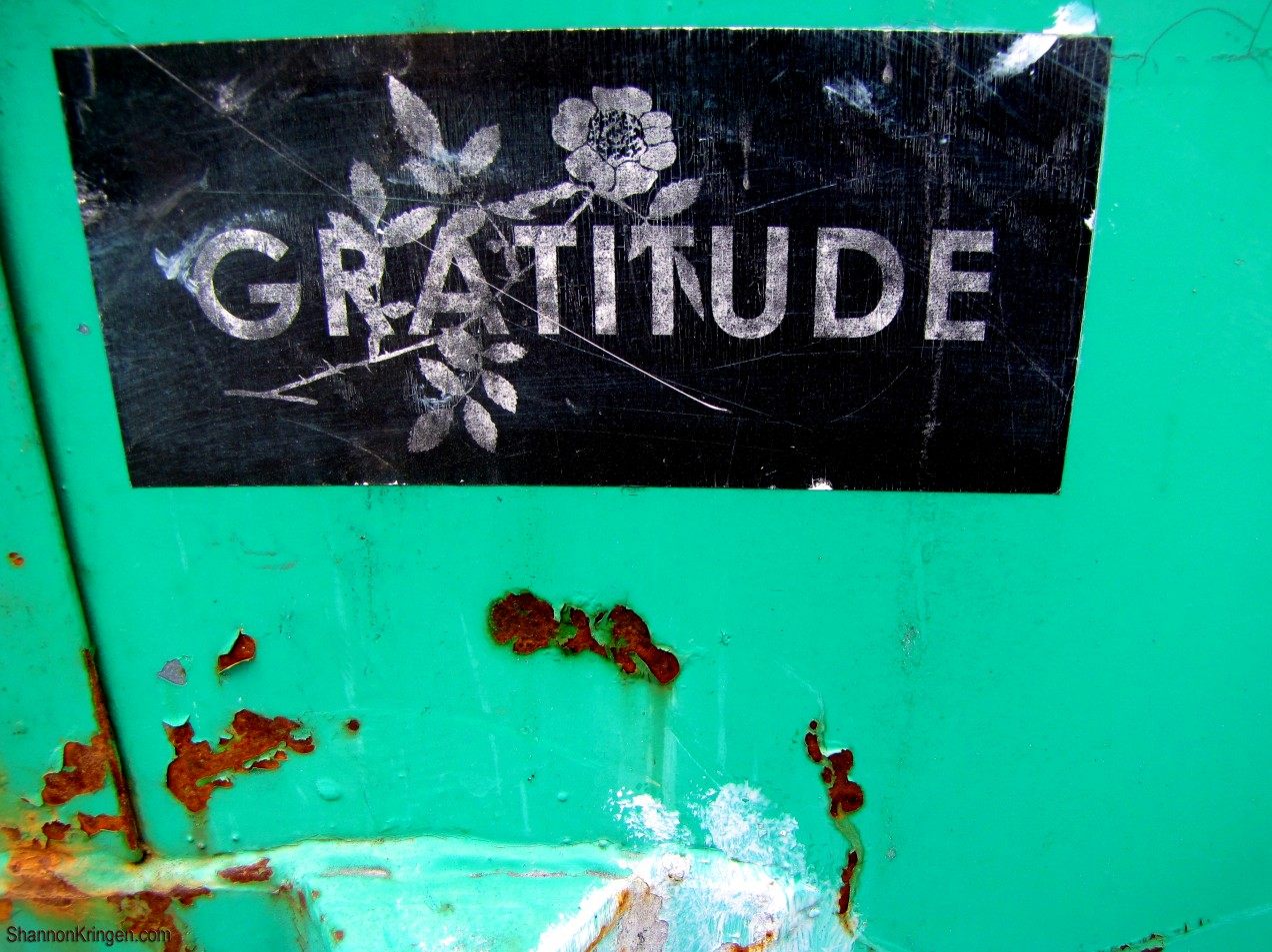 gratitude is the foundation frozen toothpaste gratitude is the foundation